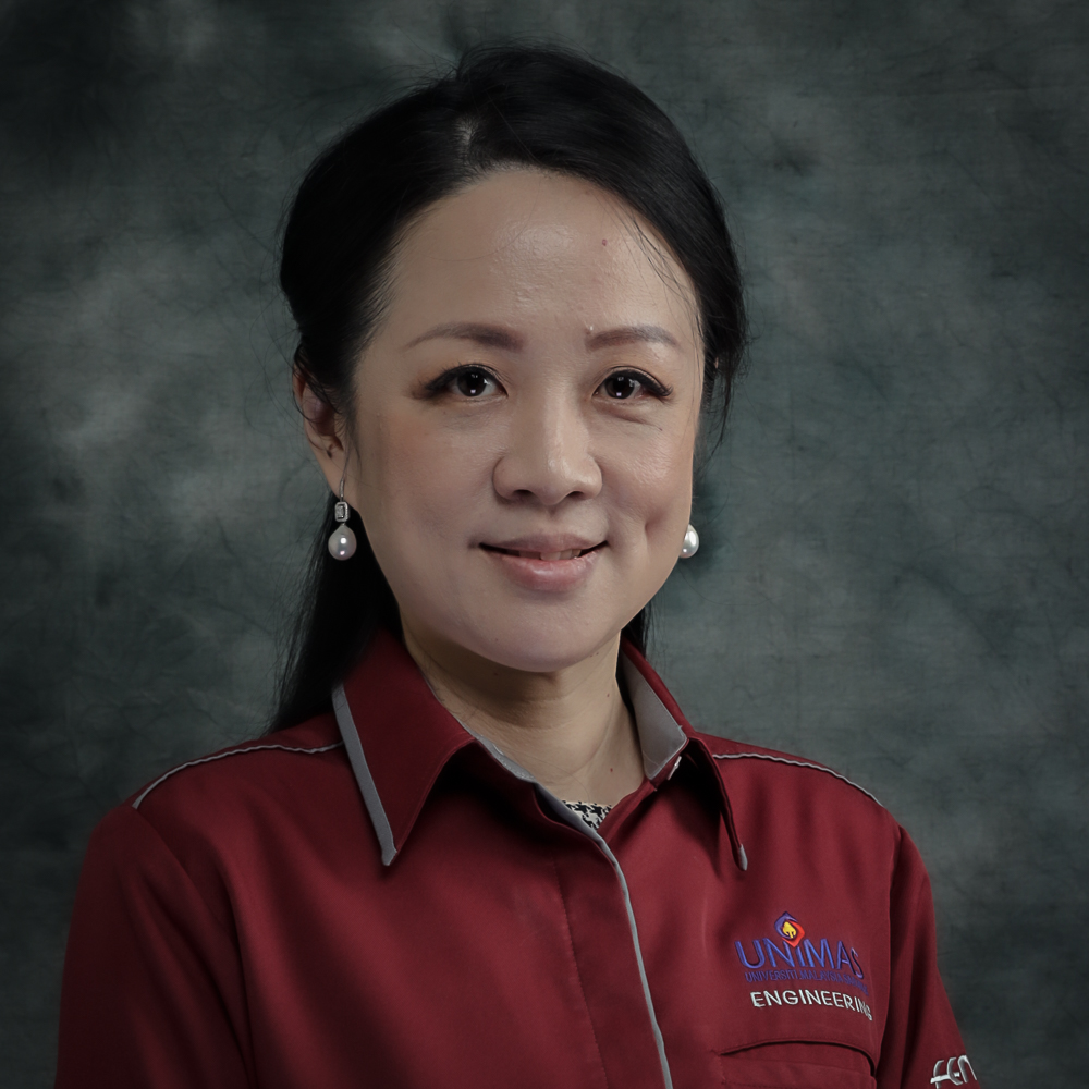 Ir Dr Ting Sim Nee