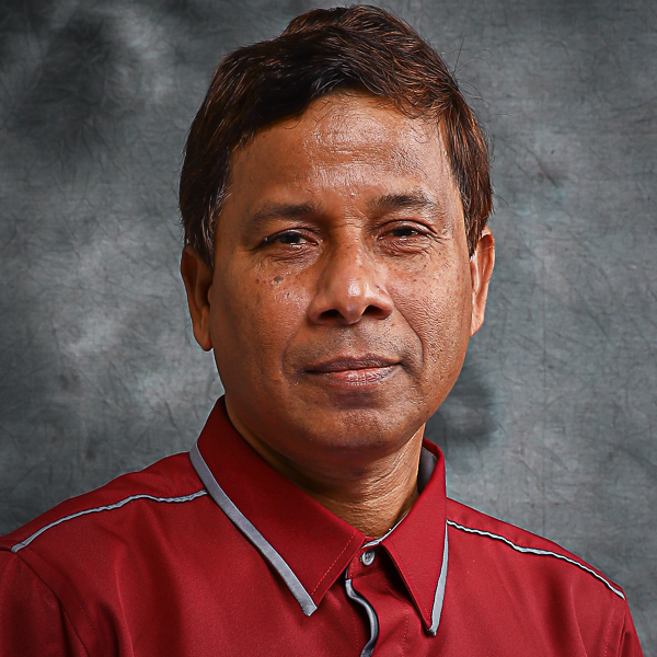 Professor Dr Eng Md. Abdul Mannan, FIEB